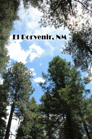 El Porvenir, NM