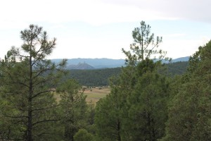 Chimney Rock in the distance